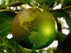 Elintarvikealan megatrendi -vastuullisuus